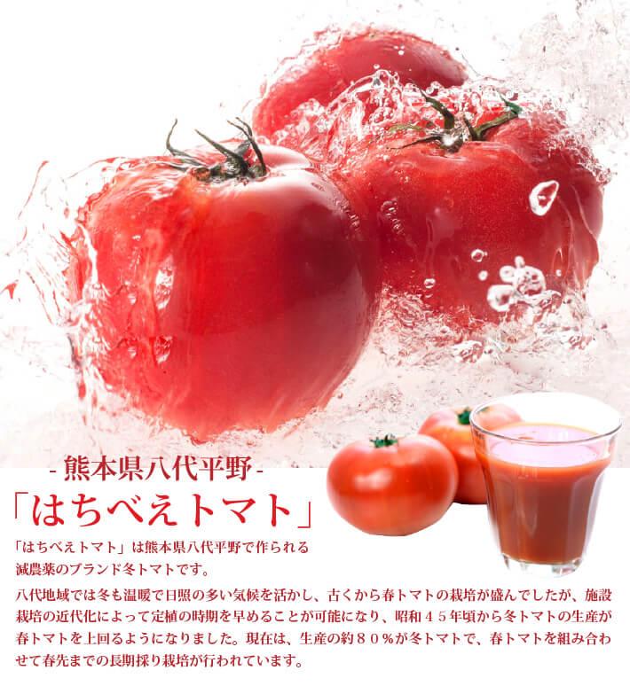 熊本県産のはちべえトマト