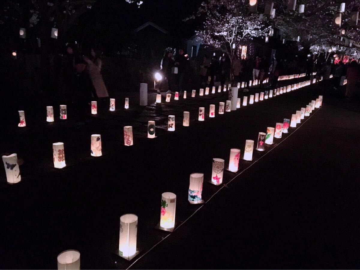 参道に並ぶ灯籠